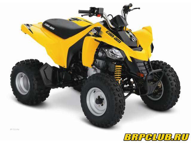 BRP DS 250.jpg