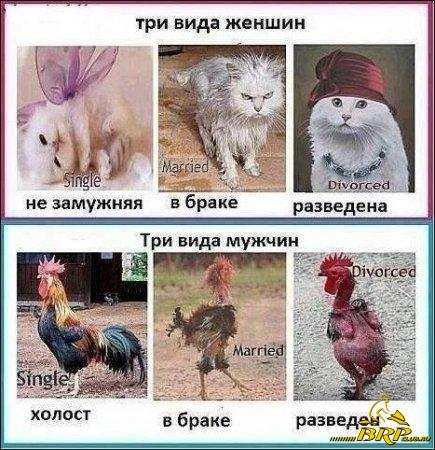 1380670764_1.jpg