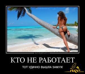 tmb_2304121250285201.jpg