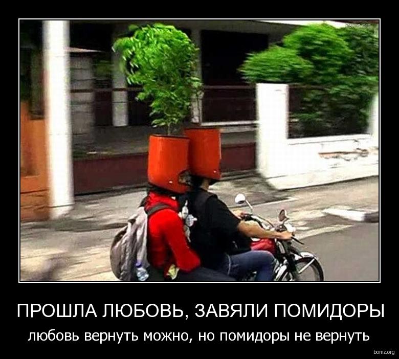 333809-2011.12.21-01.22.57-bomz.org-demotivator_proshla_lyubov_zavyali_pomidoriy_lyubov_vernut_mojno_no_pomidoriy_ne_vernut.jpg