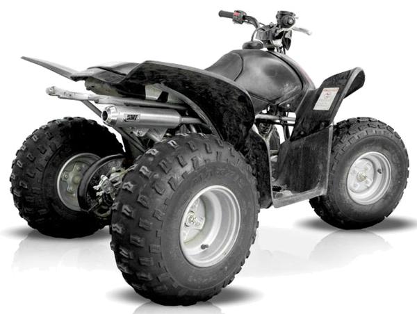 Honda   TRX  90 X.jpg