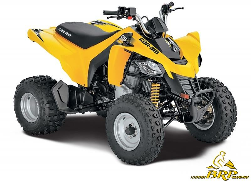 Can-Am DS 250.jpg