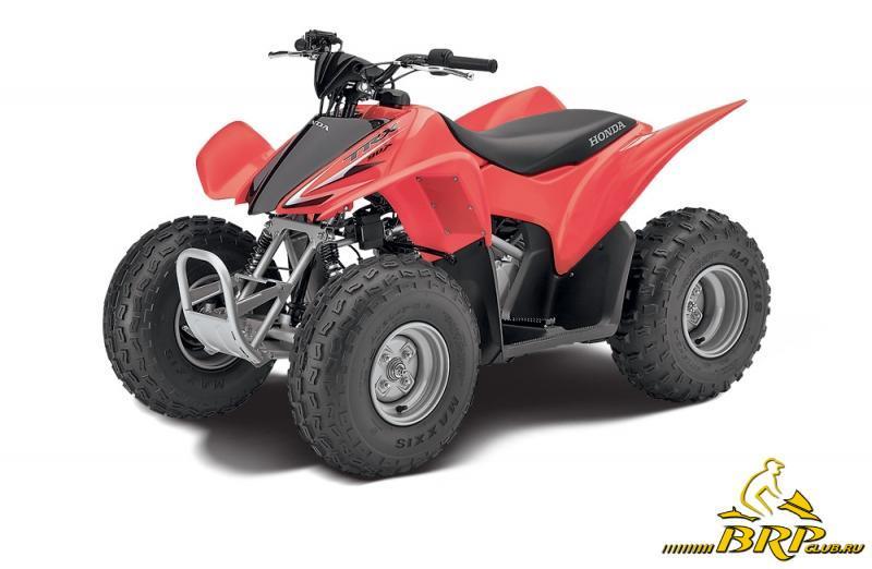 Honda TRX 90.jpg