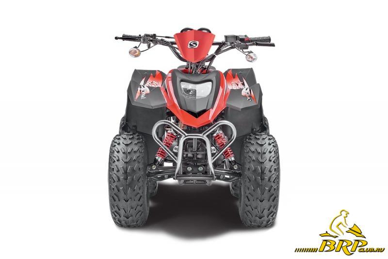 STELS ATV 110.jpg