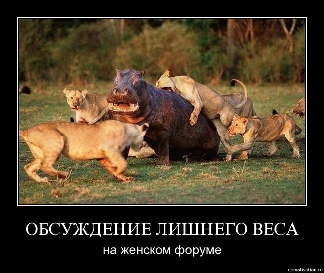 y_dccc10c6.jpg