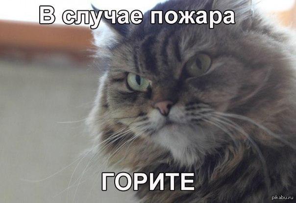 LXtLADUu_Pw.jpg