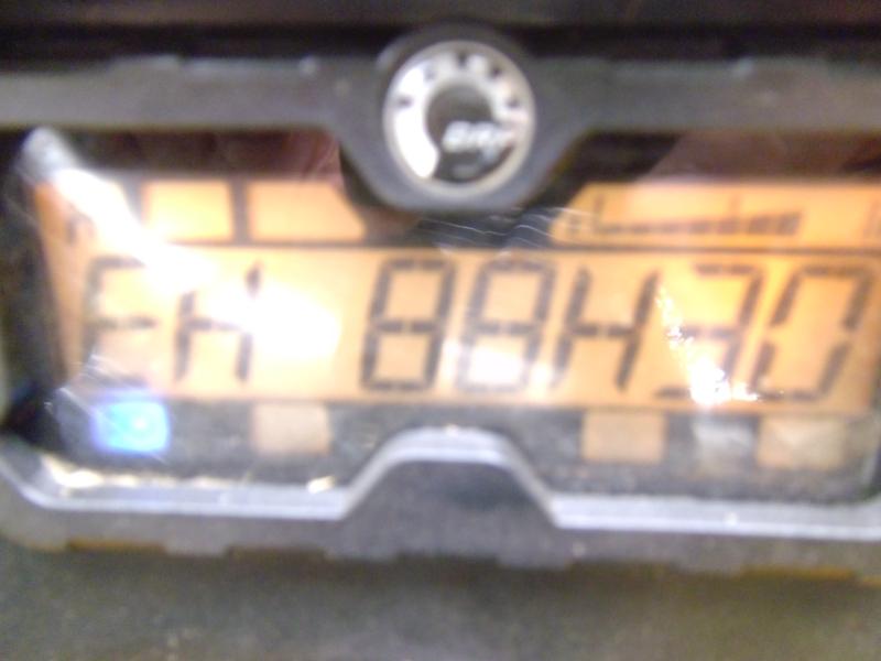 P1000647.JPG