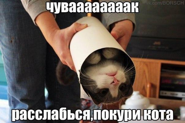 k_EOvq_DiuQ.jpg