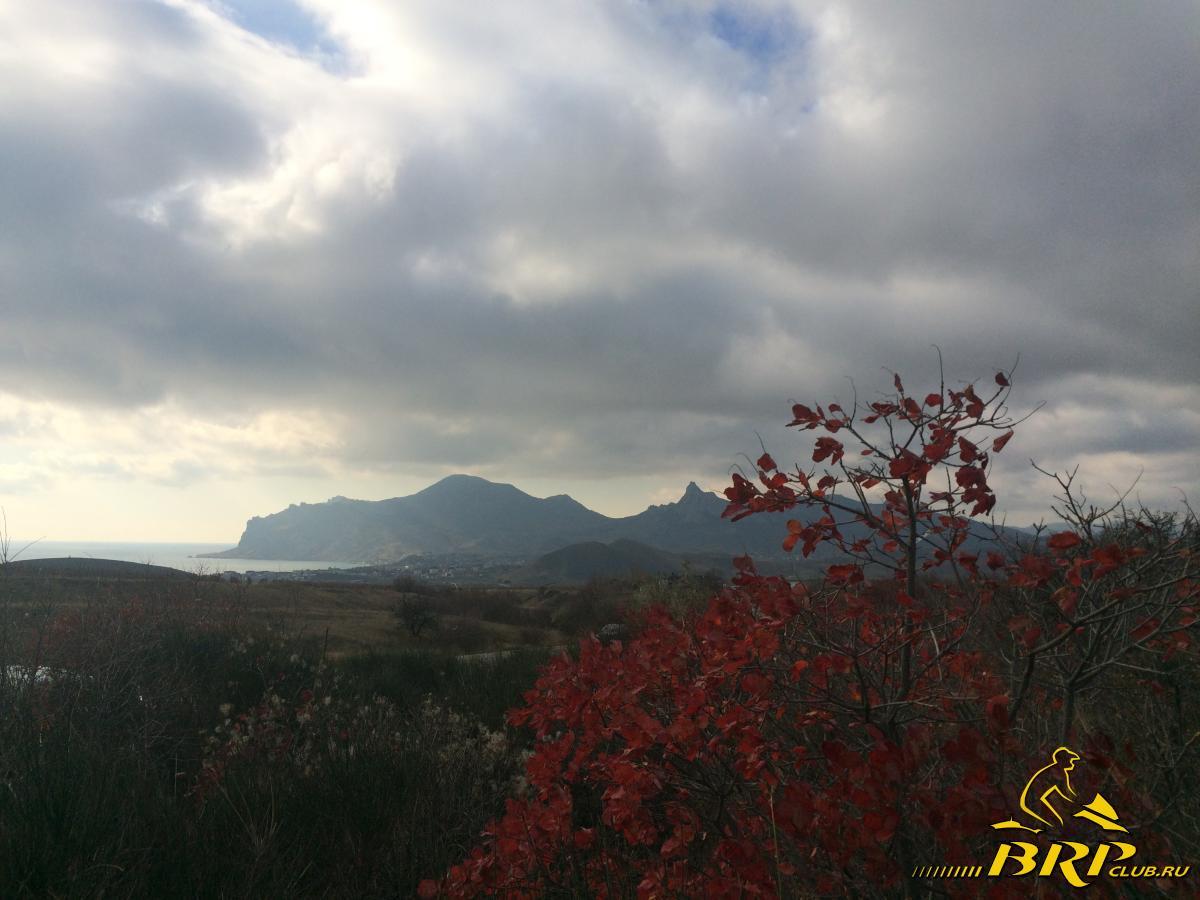 Осень ноябрь 17.11.15 002.JPG